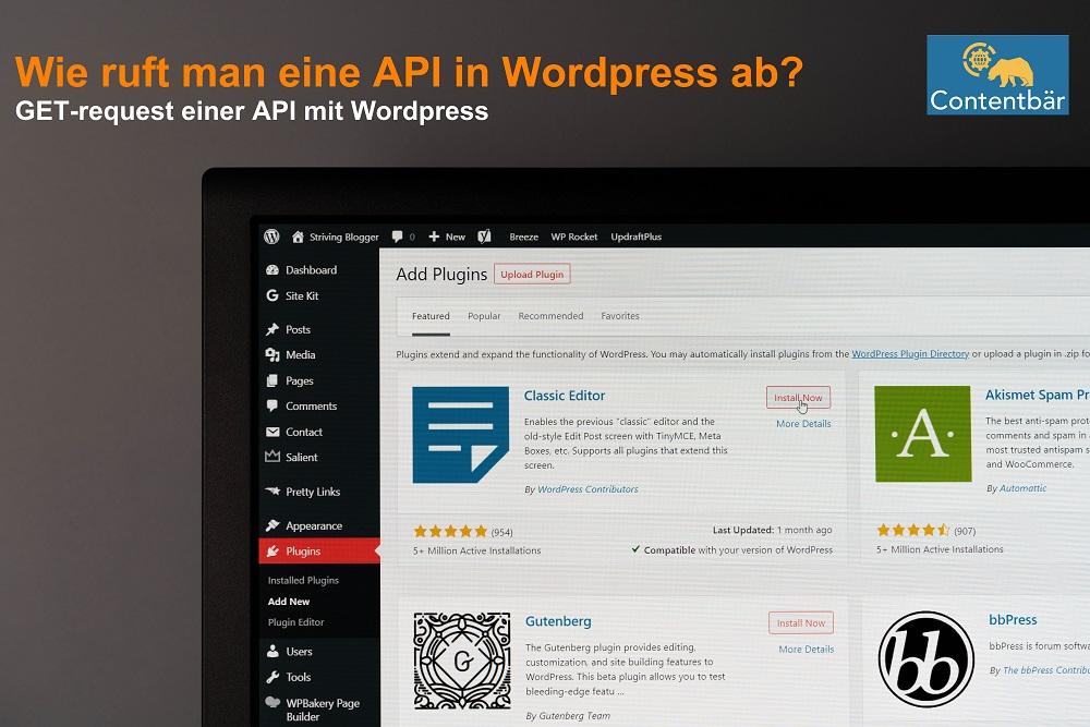 API in Wordpress einbinden